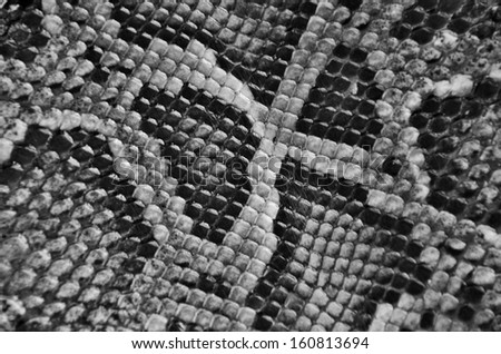 Pattern of black and white boa skin texture