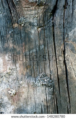 Pattern of old weathered timbered wall, great background, texture, wallpaper - stock photo