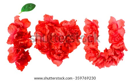 pattern of red azalea flowers in form of I LOVE YOU on white background isolated
