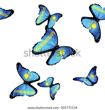 Pattern with flying Kazakhstan butterflies - stock photo