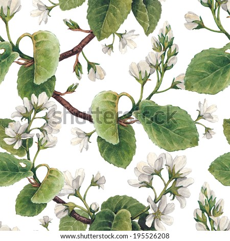 Pattern with watercolor apple flowers  - stock photo