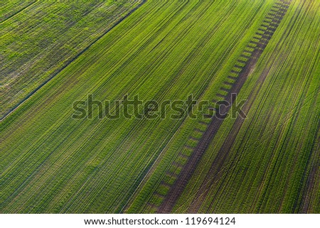 Patterns in the farmland - stock photo