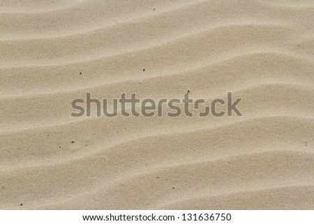 Patterns in the sand on South Padre Island, TX.
