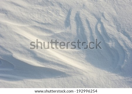 Patterns in the snow after a strong wind.  - stock photo