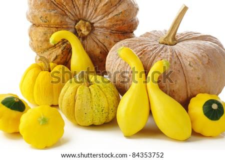 pattypan,pumpkin and squash on white background - stock photo