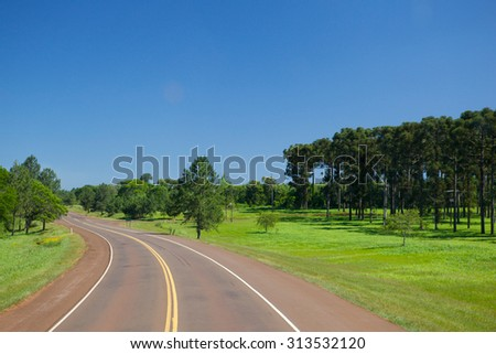 Paved road in a green forest. Turn left. Photograph taken with a high point. - stock photo