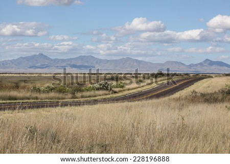 Paved two lane highway in Fall grassland prairie with wild desert broom shrubs in white bloom/Asphalt Road Bordered by Wild White Blooming Desert Broom in Autumn Grassland/Tarmac road in rural prairie - stock photo
