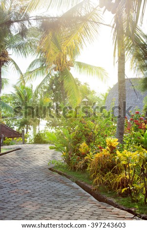 pavement road in sunny tropical park with palm trees and flowers