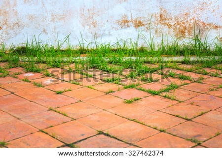 Pavement with green grass and old white painted wall. - stock photo