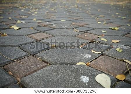 paving stone driveway - stock photo