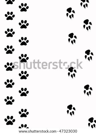 paws wildlife - stock photo