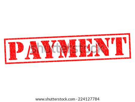 PAYMENT red Rubber Stamp over a white background. - stock photo