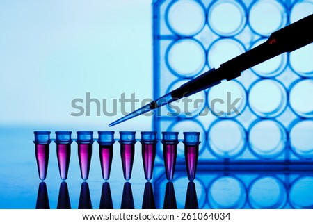 PCR strip test tubes and micropipette in genetics laboratory - stock photo