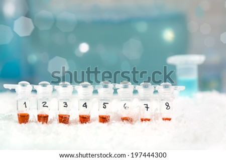 PCR stripe with samples on ice, text space - stock photo