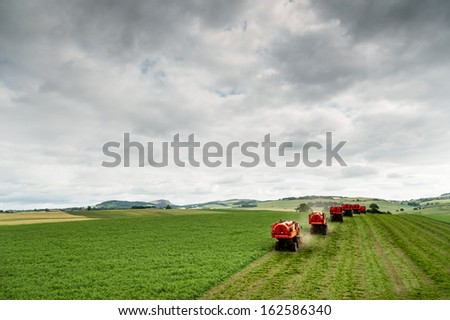 Pea harvesting in Perthshire in summer. - stock photo