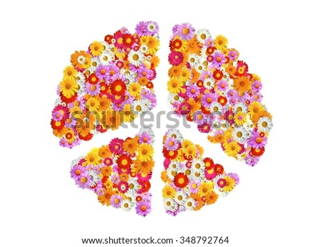 Peace Sign with garden pyrethrum seperated - stock photo