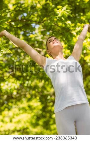 Peaceful blonde enjoying the sunshine on a sunny day - stock photo