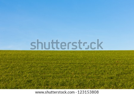 Peaceful deserted landscape with a lush green grassy field and clear blue sky - stock photo