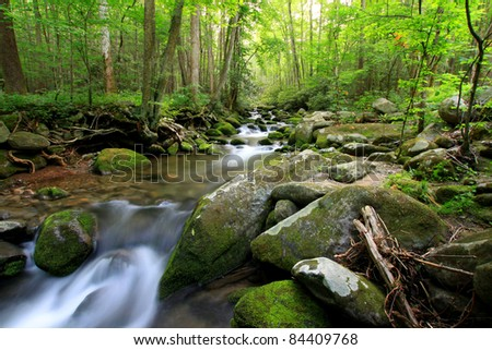 peaceful flowing stream in the smokey mountains