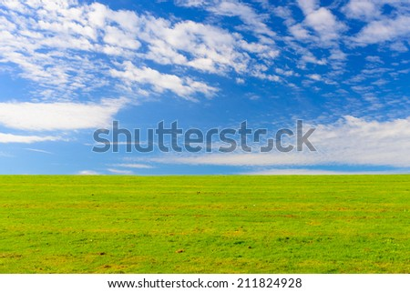 Peaceful image of vibrant green grass against a blue sky with clouds and room for copy space, the location is the Rheinhaue in Bonn, Germany - A recreational park which covers approximately 40 acres - stock photo