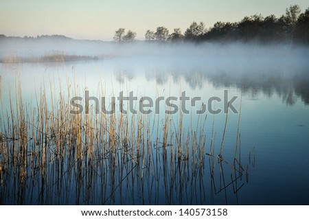 peaceful lake in the mist, Wigry - stock photo