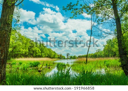 peaceful landscape - lake, trees and cloudy sky - stock photo