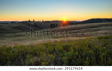 Peaceful Meadow at Wind Cave National Park - stock photo