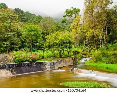 Peaceful mountain stream flows through lush forest , Doi Inthanon National Park Thailand. - stock photo