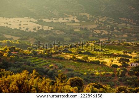 Peaceful rural landscape of Sardinia on sunset, Italy - stock photo