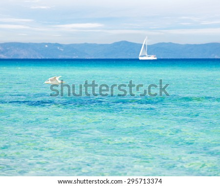 Peaceful seascape with blue-green transparent water, seagull and a yacht in the background. - stock photo