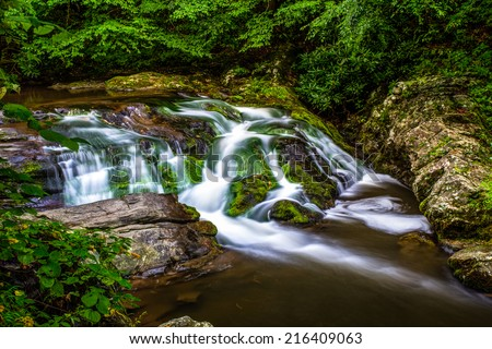 Peaceful Smoky Mountain stream along the Roaring Fork Motor Nature Trail. Great Smoky Mountains National Park. Gatlinburg, Tennessee.