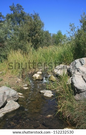 Peaceful stream trickling through grass and rocks, California - stock photo