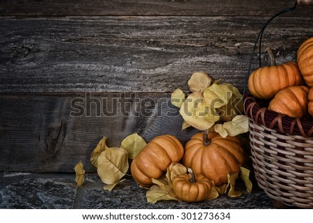 Peaceful Thanksgiving ,Fall Still Life with Mini Pumpkins, aspen leaves, a basket on stone and against dark, rustic wood board background with room or space for copy, text, your words.  Horizontal  - stock photo