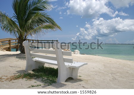 Peaceful white park bench overlooking the ocean in the Florida Keys