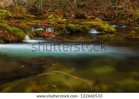 Peacefully flowing stream and autumn foliage in the forest in the mountains