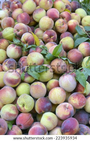 peaches on a shop window - stock photo