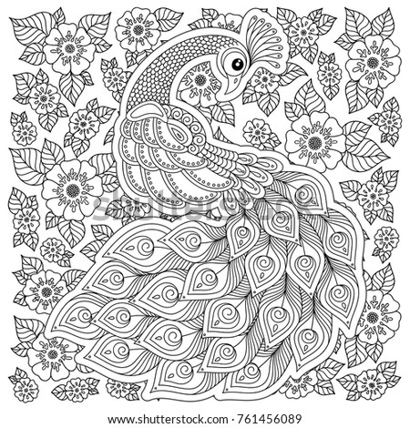 Peacock Adult Antistress Coloring Page Black Stock
