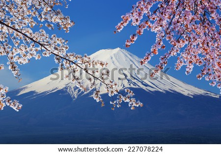 peak of Mount Fuji with Cherry Blossom, view from Lake Kawaguchiko, Japan - stock photo