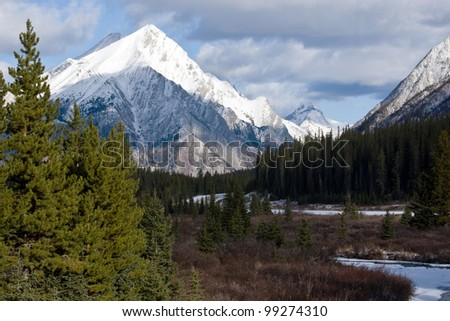 peaks of Canadian Rockies with pines and forest in front - stock photo