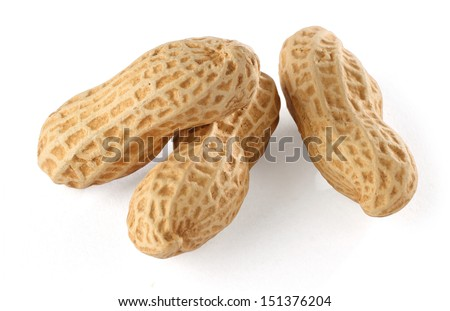 Peanut - stock photo