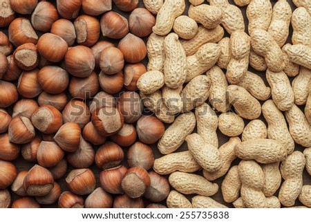 peanuts and hazelnuts on the table background - stock photo
