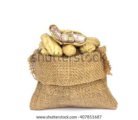 peanuts in burlap bag on white Background