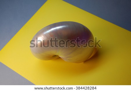 Pearl nacre shell of Nautilus pompilius, the Chambered nautilus, on yellow background