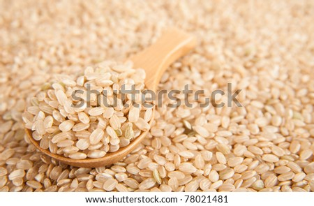 Pearled Rice in Bamboo Spoon - stock photo