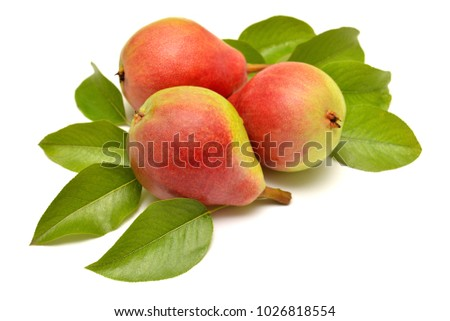 Pears and leaves isolated on white background