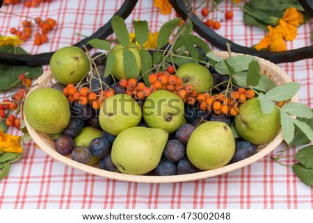 pears and plums are at the plate on the table