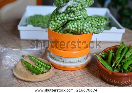Peas packed in plastic bags on the kitchen scale, measurement and preparation for deep freezing for the winter stores - stock photo