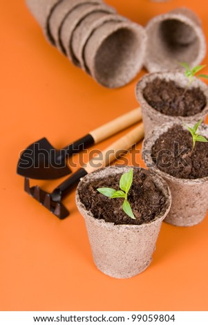 Peat pots, seedlings and garden tools on a brown background