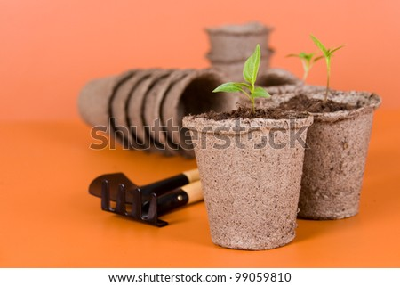 Peat pots, seedlings and garden tools on a brown background - stock photo
