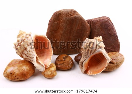 pebble and sea snail in piles isolated on white background - stock photo